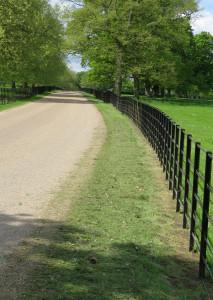 Park Rail Fencing